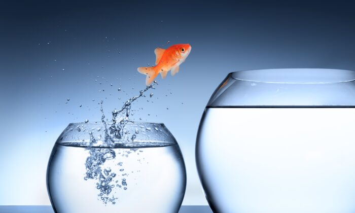 Opportunity and growth are waiting for us on the other side of fear. (Michal Bednarek/Shutterstock)