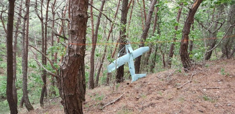 A small aircraft, what South Korea's Military said is believed to be a North Korean drone, is seen at a mountain near the demilitarized zone separating the two Koreas in Inje, South Korea on June 9, 2017. (The Defense Ministry/News1 via Reuters/File Picture)