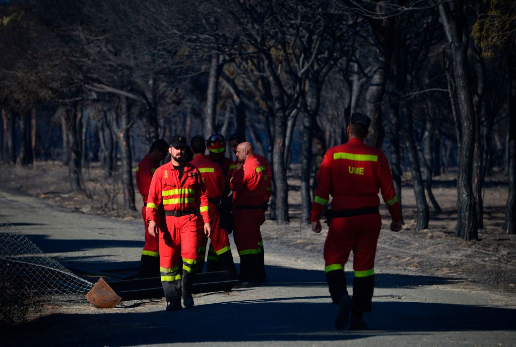 UME (Military Emergency Unit)'s members walk on a road crossing a charred forest after a wildfire in Mazagon, near the Donana National Park on July 26, 2017. (CRISTINA QUICLER/AFP/Getty Images)
