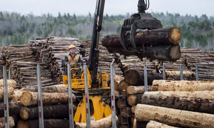 A worker loads logs at Ledwidge Lumber Co. in Halifax on May 10, 2017. (The Canadian Press/Darren Calabrese)