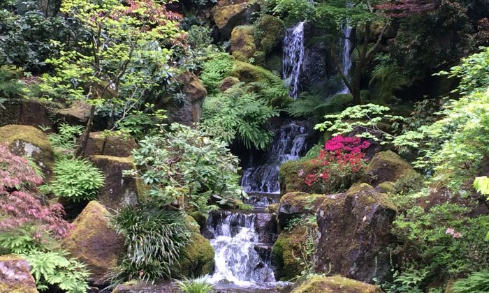 Waterfall at the Japanese Gardens in Portland. (Beverly Mann)