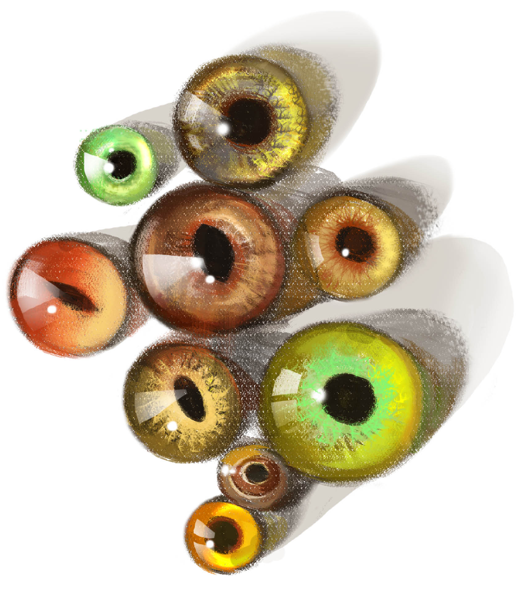 Tohickon Glass Eyes produces anything from deer eyes to bird, fish, and crocodile eyes, in its small Pennsylvania factory.