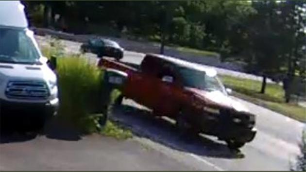 (Screenshot/surveillance footage)