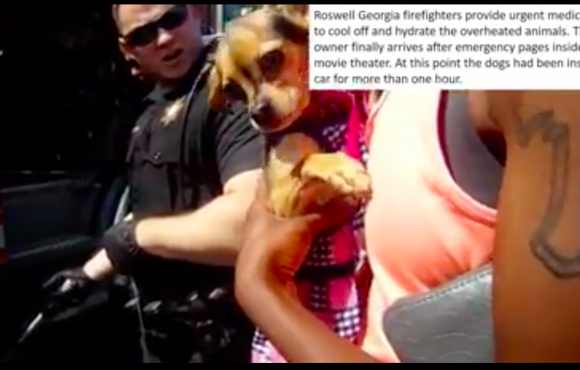 A dog rescued from a hot car in Georgia on July 2, 2017 being held by what appears to be his owner in bodycam footage released by the Roswell City Police Department. (Courtesy of Roswell City Police).