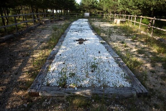 A mass grave were found in 2010 the remains of the bodies of those killed by forces of the dictator Francisco Franco in 1936 is seen in the area known as La Pedraja, Burgos, Spain, June 23. (Reuters/Juan Medina)
