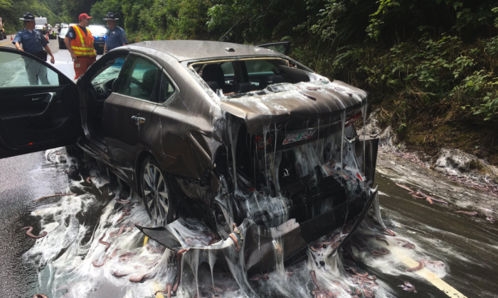 Car covered in slime after truck carrying hagfish overturned on Oregon highway 101 on July 13, 2017. (Depoe Bay Fire District)