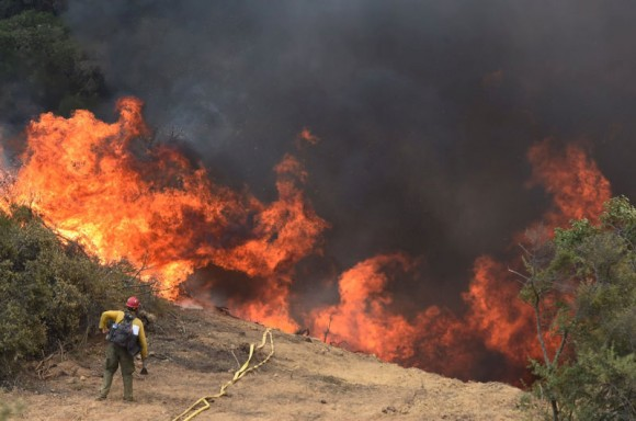 A United States Forest Service firefighter keeps a close eye on flames during a back fire operation on the Whittier fire near Bee Rock off Hwy 154 near Santa Barbara, California, July 16, 2017. (Eliason/Santa Barbara County Fire/via Reuters)