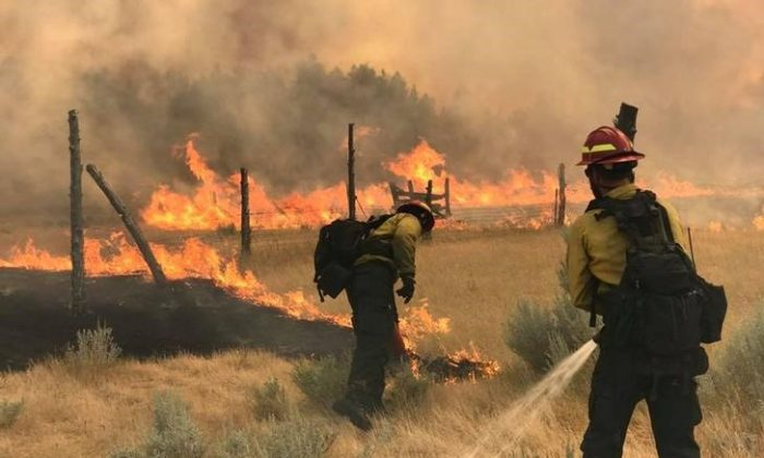 Wildland Firefighters battle the Bridge Coulee Fire, part of the Lodgepole Complex, east of the Musselshell River, north of Mosby, Montana, U.S. July 21, 2017. (Bureau of Land Management/Jonathan Moor/Handout via Reuters)