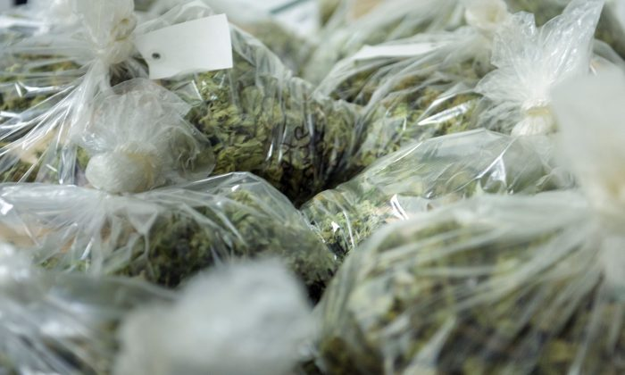 Police Arrest 16 and Seize $35M Worth of Pot in Atlanta Grow