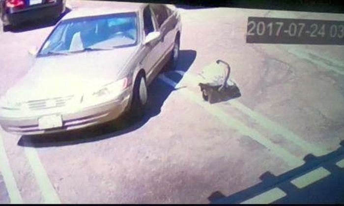 An image from a security camera shows a car leaving as an abandoned baby remains in a car seat outside in Suisun City. (Suisun City Police Department)
