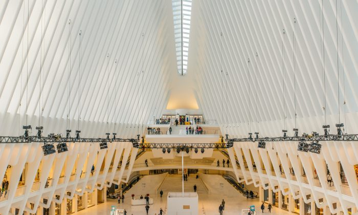 The Oculus at the World Trade Center Transportation Hub. (Paper Cat/Shutterstock)