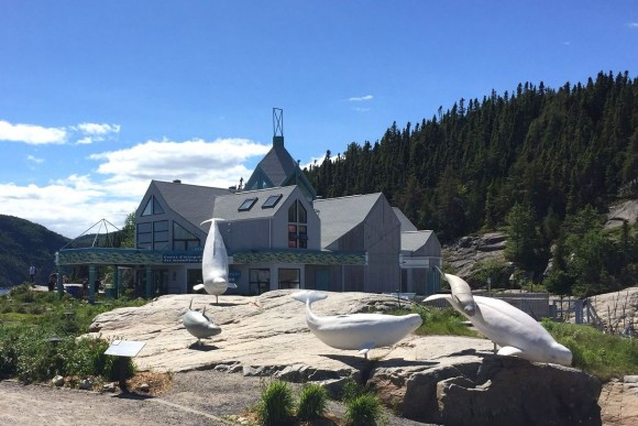 The Marine Environment Discovery Centre in Tadoussac. (Janna Graber)