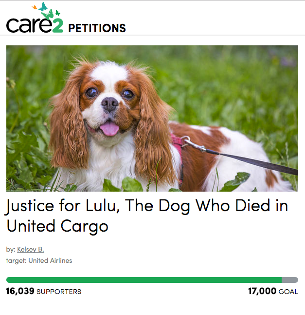 Petition calling on United Airlines to improve conditions for pets held in cargo holds during delays. (screenshot/thepetitionsite.com)