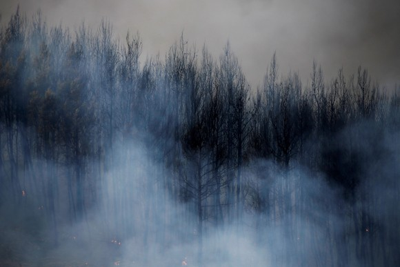 Smoke rises from burned trees during a wildfire near the village of Metochi, north of Athens, Greece, August 14, 2017. REUTERS/Alkis Konstantinidis