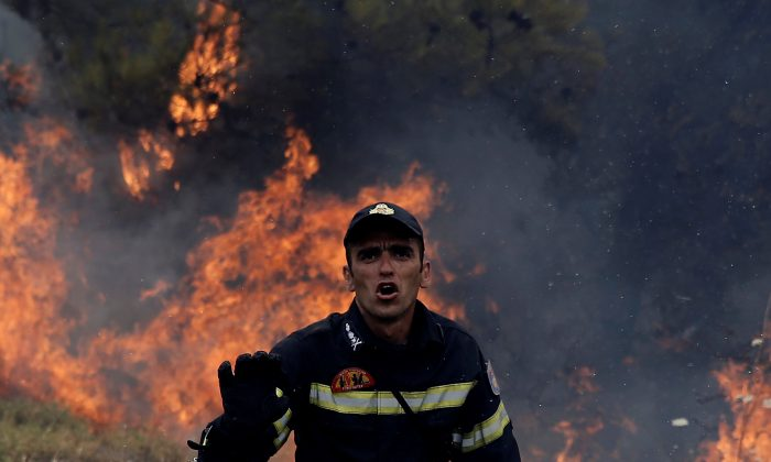 A firefighter reacts as flames rise during a wildfire near the village of Kapandriti, north of Athens, Greece, August 15, 2017. (Reuters/Alkis Konstantinidis)