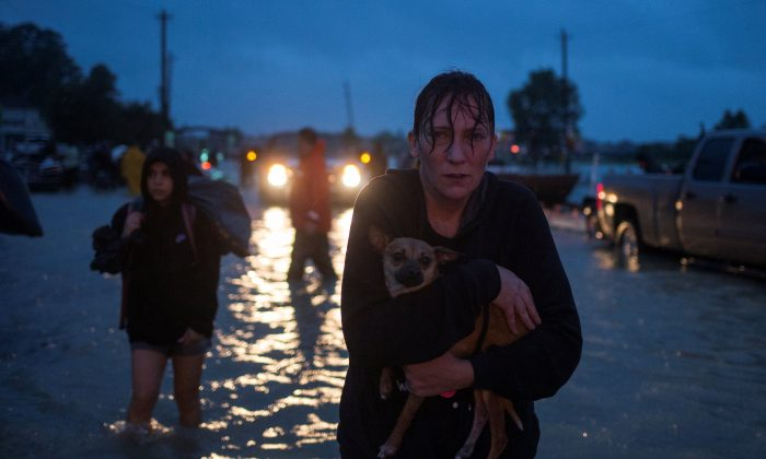 A woman holds her dog as she arrives to high ground after evacuating her home due to floods caused by Tropical Storm Harvey along Tidwell Road in east Houston, Texas on August 28, 2017. (Reuters/Adrees Latif)