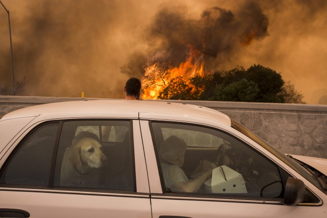 Residents try to see if their house on the other side of the flames might burn during La Tuna Fire near Burbank, Calif., on Sept. 2, 2017. Officials believe the fire, which is at 5,000 acres and growing, is the largest fire ever in L.A. (David McNew/Getty Images)