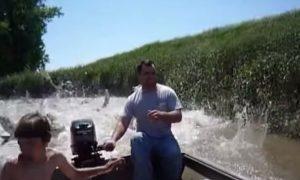 Video: Asian Carp 'Attack'