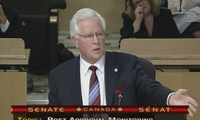 Former MP Terence Young speaks during Senate hearings on Vanessa's Law in 2014. (Courtesy of Terence Young)