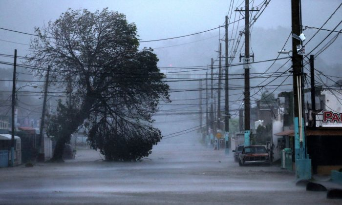 Flooded street in the eastern town of Fajardo during the passing of Hurricane Irma north of Puerto Rico on September 6, 2017. (Photo by Jose Jimenez/Getty Images)