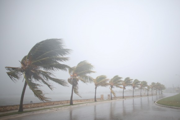 Palm trees sway in the wind prior to the arrival of the Hurricane Irma in Caibarien, Cuba, September 8, 2017. (Reuters/Alexandre Meneghini)