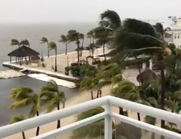 Palm trees sway as strong wind blows in Key Largo, Florida, U.S., September 9, 2017, in this still image taken from a video obtained from social media. Picture taken September 9, 2017. (Facebook/Laura Reuters)