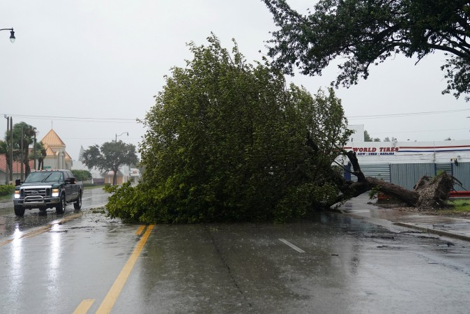 A fallen tree blocks Biscayne Blvd. as Hurricane Irma arrives in Hollywood, Florida on Sept. 9, 2017. (REUTERS/Carlo Allegri)