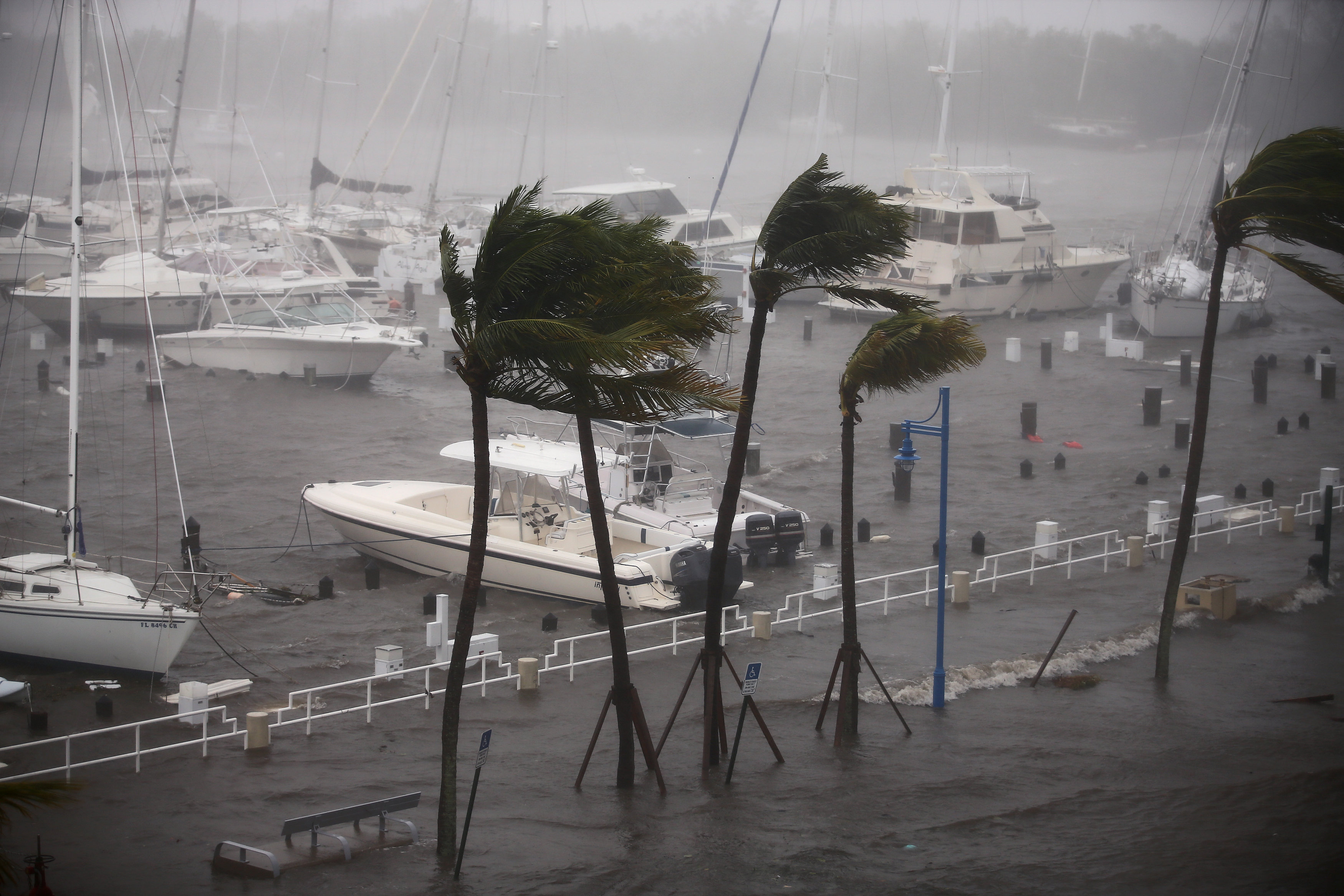 Boats are seen at a marina in Coconut Grove as Hurricane Irma arrives at south Florida, in Miami, Florida on Sept. 10, 2017. (REUTERS/Carlos Barria)