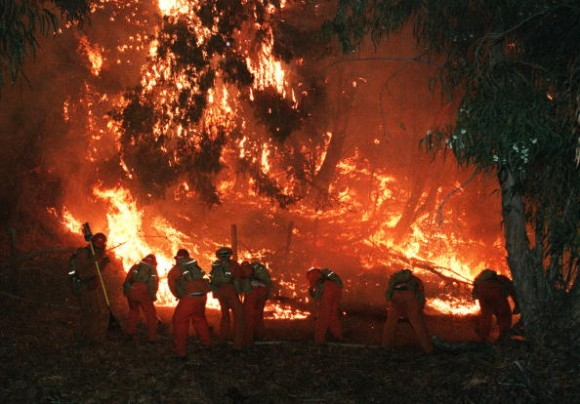 MALIBU, CA - NOVEMBER 3: US Forest service firefighting crew fights the forest fire above Malibu early 03 November 1993 after a wildfire burned through the area late 02 November, burning over 200 homes from Calabasas to Malibu on the coastline north of Los Angeles. (Photo credit should read HAL GARB/AFP/Getty Images)