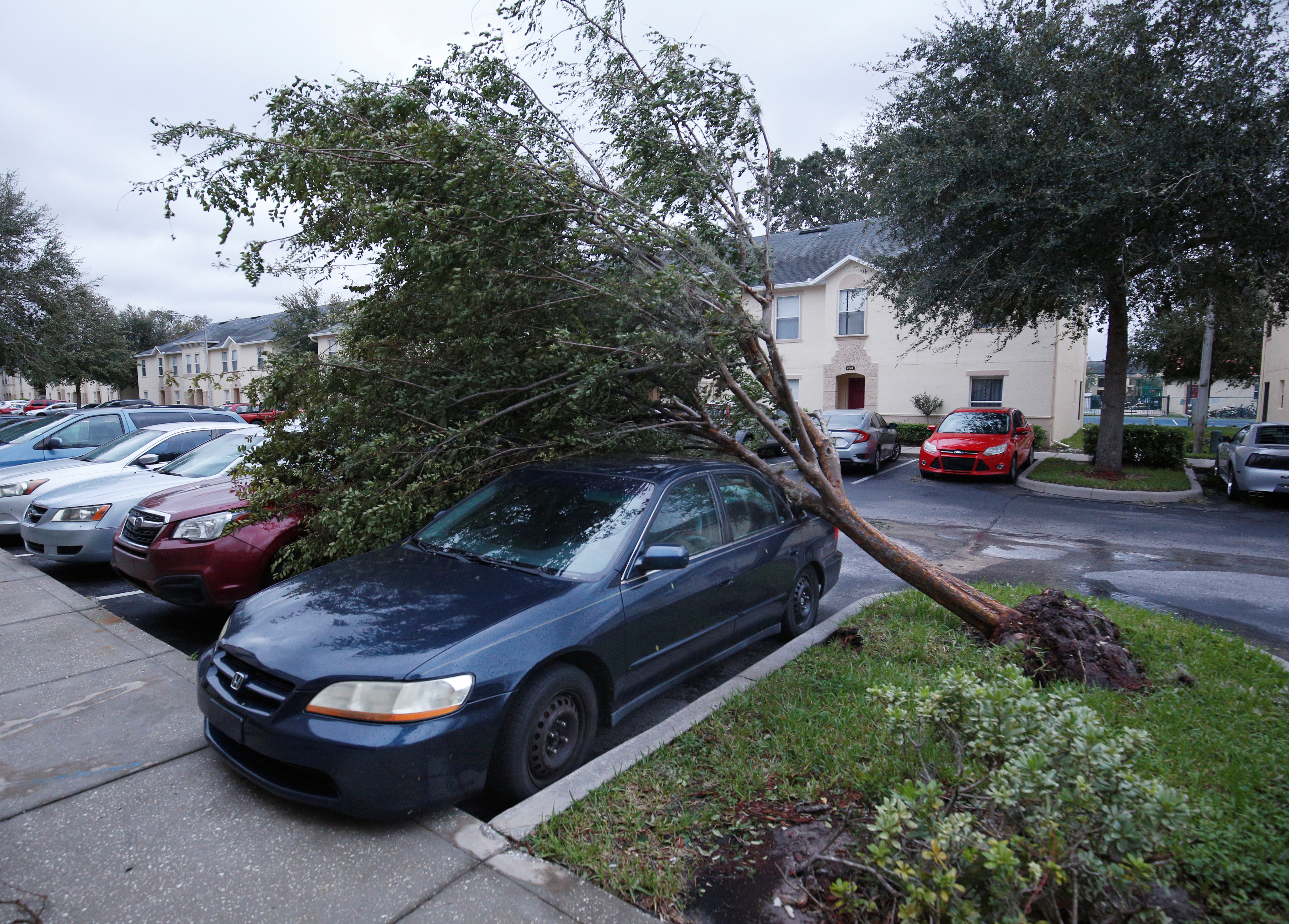 A tree sits atop two cars in wake of Hurricane Irma making landfall in Kissimmee, Florida on Sept. 11, 2017. (REUTERS/Gregg Newton)