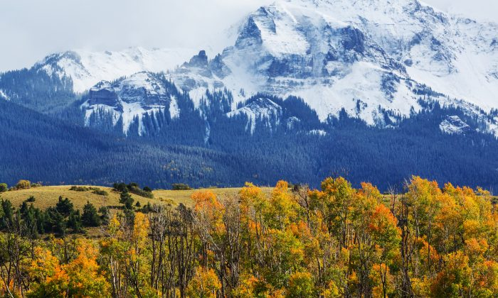 The Rocky Mountains in Colorado. (Galyna Andrushko/Shutterstock)