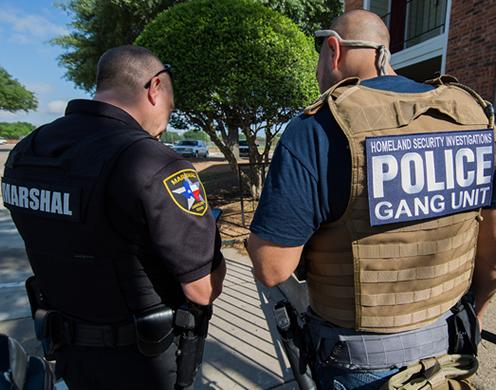 A nationwide gang operation netted 1,378 arrests in May. ICE's Homeland Security Investigations targeted gang members and associates involved in transnational criminal activity, including drug trafficking, weapons smuggling, human smuggling and sex trafficking, murder, and racketeering. (ICE)