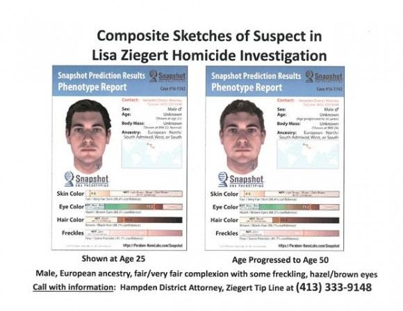 A profile of Lisa Ziegert's killer based on DNA recovered from her body. (Hampden District Attorney's Office)