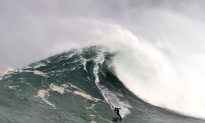 Big Wave Surfer Breaks Back after 50-Foot Wave Crashes Down on Him