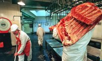 CCTV Cameras to Be Made Compulsory in Slaughterhouses