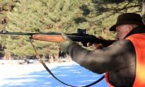 Three Hunters Among First Kills of 2017 Deer Season