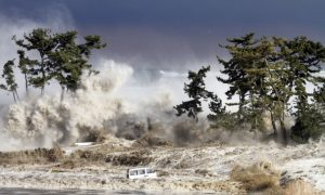 Tsunamis That Are Too Quick for Warnings Threaten New Zealand as Quake Faultline Wakes