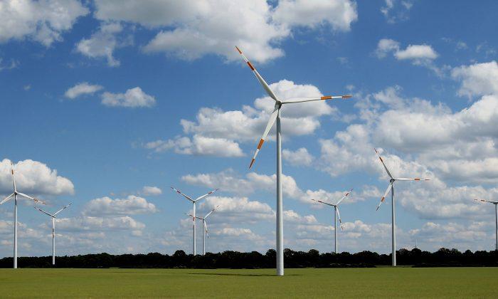 Power-generating wind turbines in a field near Gerdshagen, Germany, on June 22, 2012. (Sean Gallup/Getty Images)
