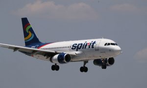 Spirit Airlines Employee Allegedly Told Student to Flush Emotional Support Hamster Down the Toilet