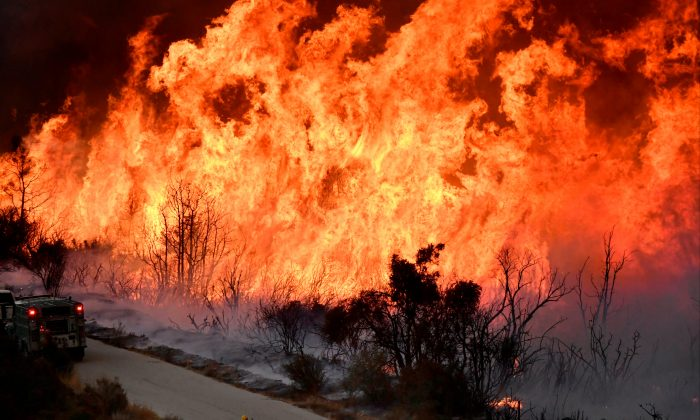 Fire fighters attack the Thomas Fire's north flank with backfires as they continue to fight a massive wildfire north of Los Angeles, near Ojai , California, U.S., Dec. 9, 2017.  (Reuters/Gene Blevins)