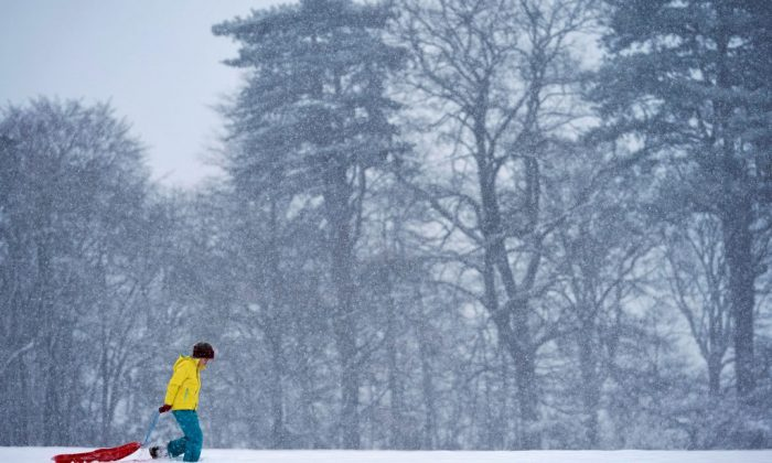 A youngster drags her sledge to the top of a snowy slope on Dec. 10, 2017 in Welsh Frankton, England. (Hugh Pinney/Getty Images)