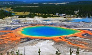 New Thermal Activity Emerges in Yellowstone National Park