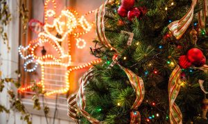 5-Year-Old Called Police to Report the Grinch was Stealing Christmas