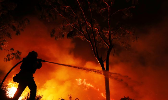A firefighter is working on extinguishing the Lilac Fire, a fast moving wildfire in Bonsall. (Reuters/Mike Blake)