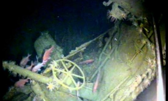 Australia's First Submarine That Vanished 103 Years Ago Has Been Found