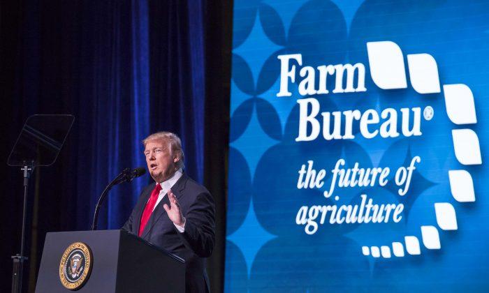 President Donald Trump speaks at the 99th annual convention of the American Farm Bureau Federation in Nashville, Tenn., on Jan. 8, 2018. (Samira Bouaou/The Epoch Times)
