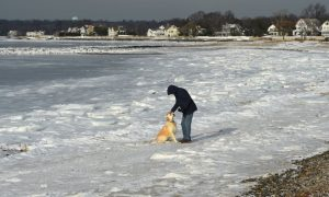 It's so Cold in America That People Are Skating at the Beach and Walking on the Ocean