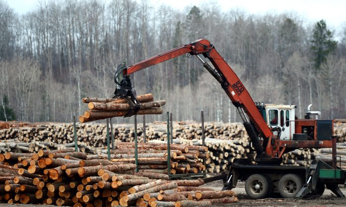 Logs are unloaded at Murray Brothers Lumber Company woodlot in Madawaska, Ont., on April 25, 2017. Canada has launched a wide-ranging attack against U.S. trade practices in a broad international complaint over American use of punitive duties. (The Canadian Press/Sean Kilpatrick)
