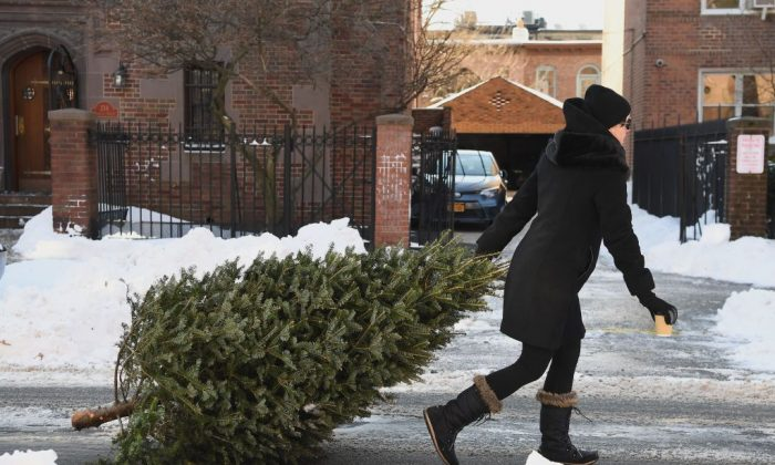 A woman drags a Christmas tree in Brooklyn, New York on Jan. 5, 2018.