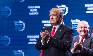 Most Economists Agree: Trump Is Driving Stock Market Boom, Economic Growth, Jobs